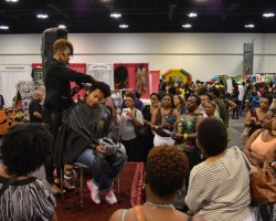 World Natural Hair Show 2015